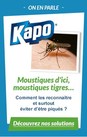 Moustiques d'ici, moustiques tigres...